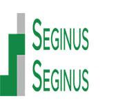 Seginus Aerospace LLC